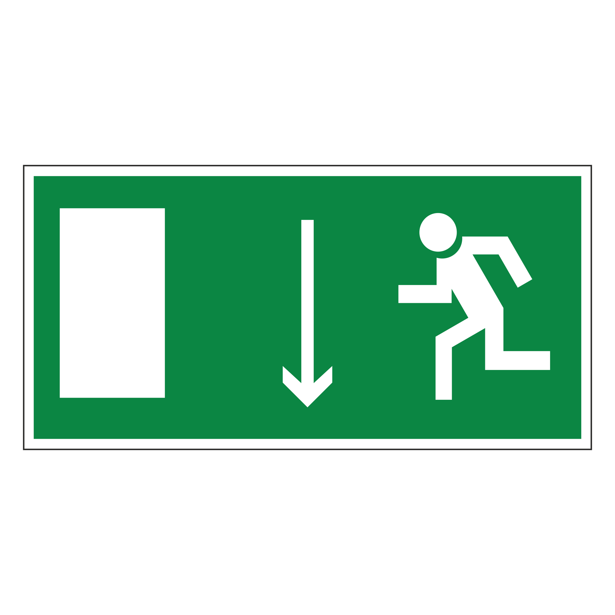 Е10 Дверь эвакуационного выхода (левосторонняя)